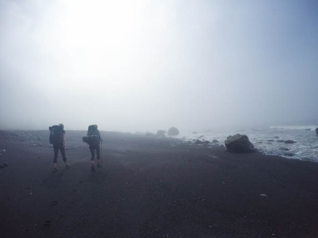 Foggy morning on the Lost Coast Trail