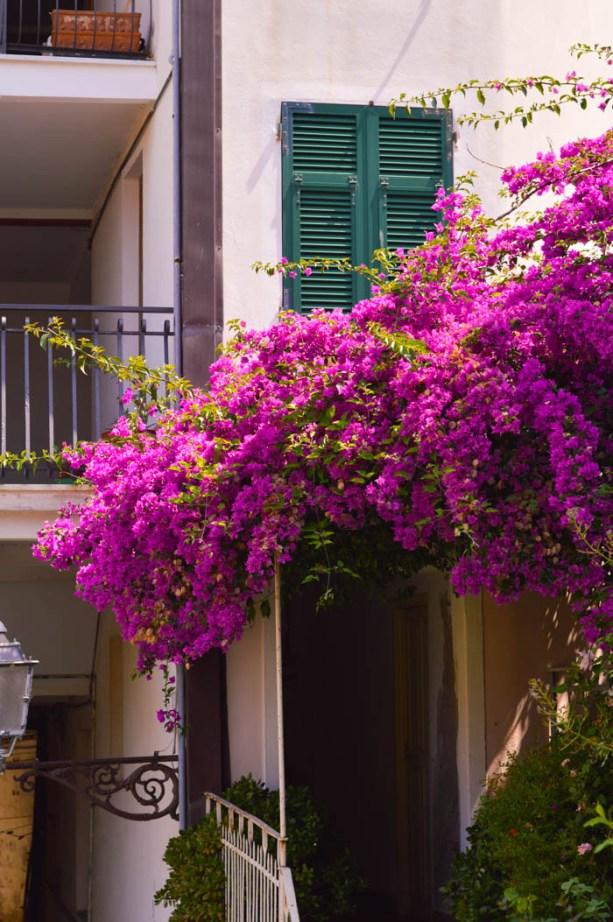 Riomaggiore, Italy - Cinqe Terre