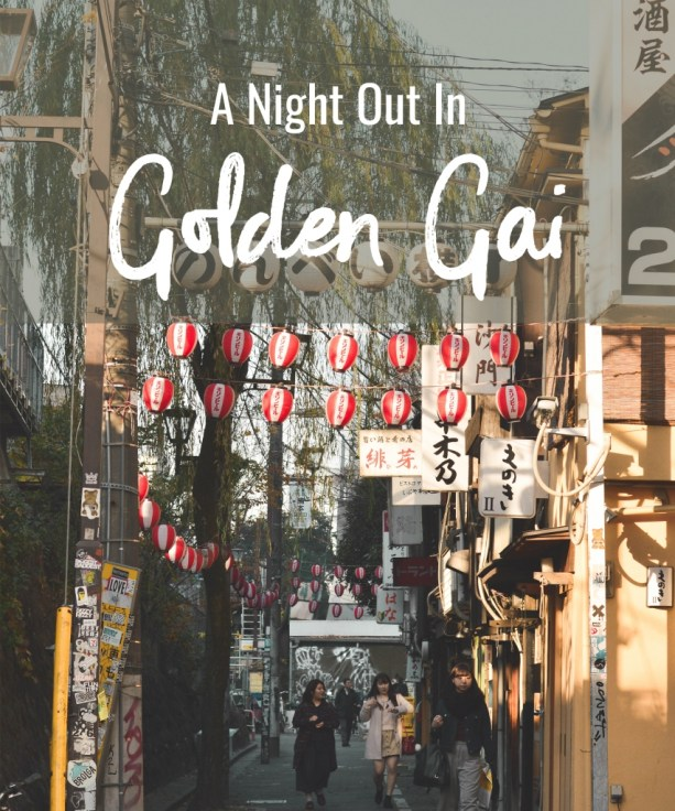 A Night Out in Golden Gai
