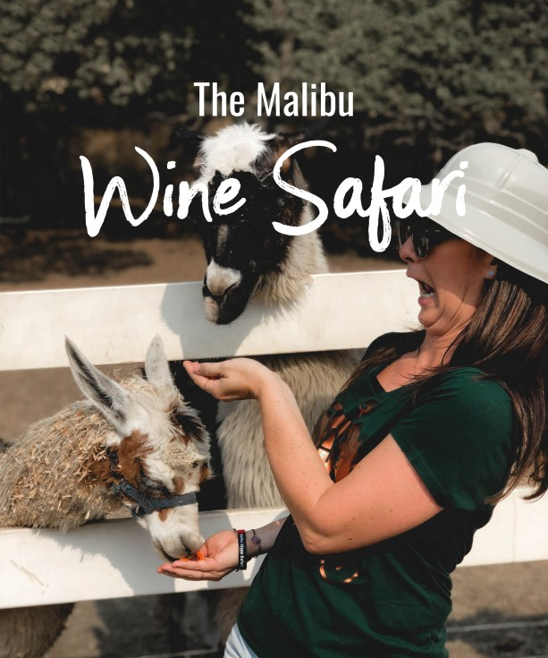 The Malibu Wine Safari