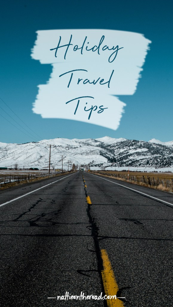 Holiday Travel Trips