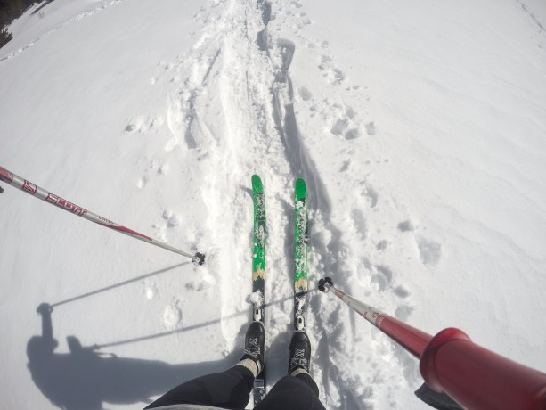 Cross Country Skiing in Tahoe
