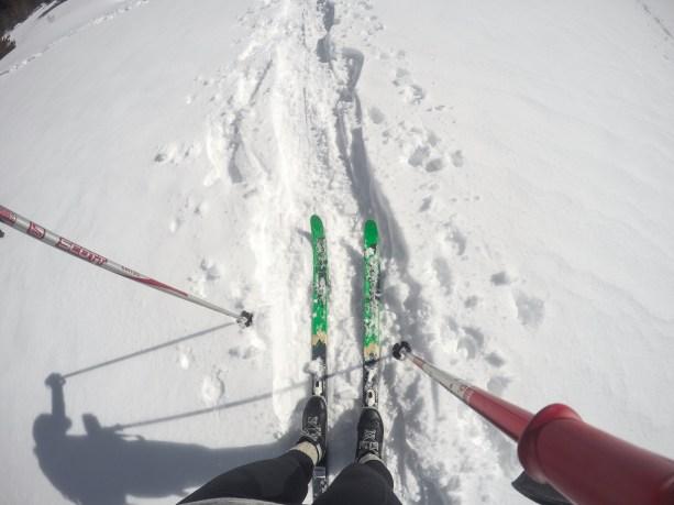 Cross Country Skiing in Tahoe