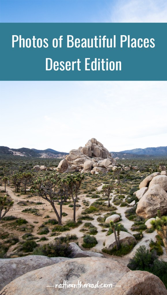 Photos of Beautiful Places: Desert Edition