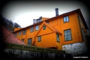 Latinskolen 2013 - Foto: Reidar Arvidson Storaker
