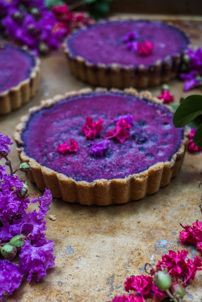 Vegan Blueberry Coconut Tarts