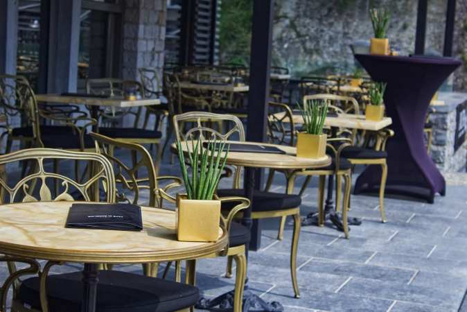 potted plants on restaurant table