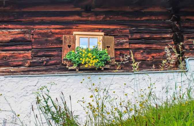 image of a chalet with greenery