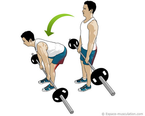 exercice-musculation-jambes-4
