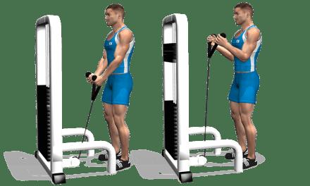 Exercice musculation: Curl à la corde
