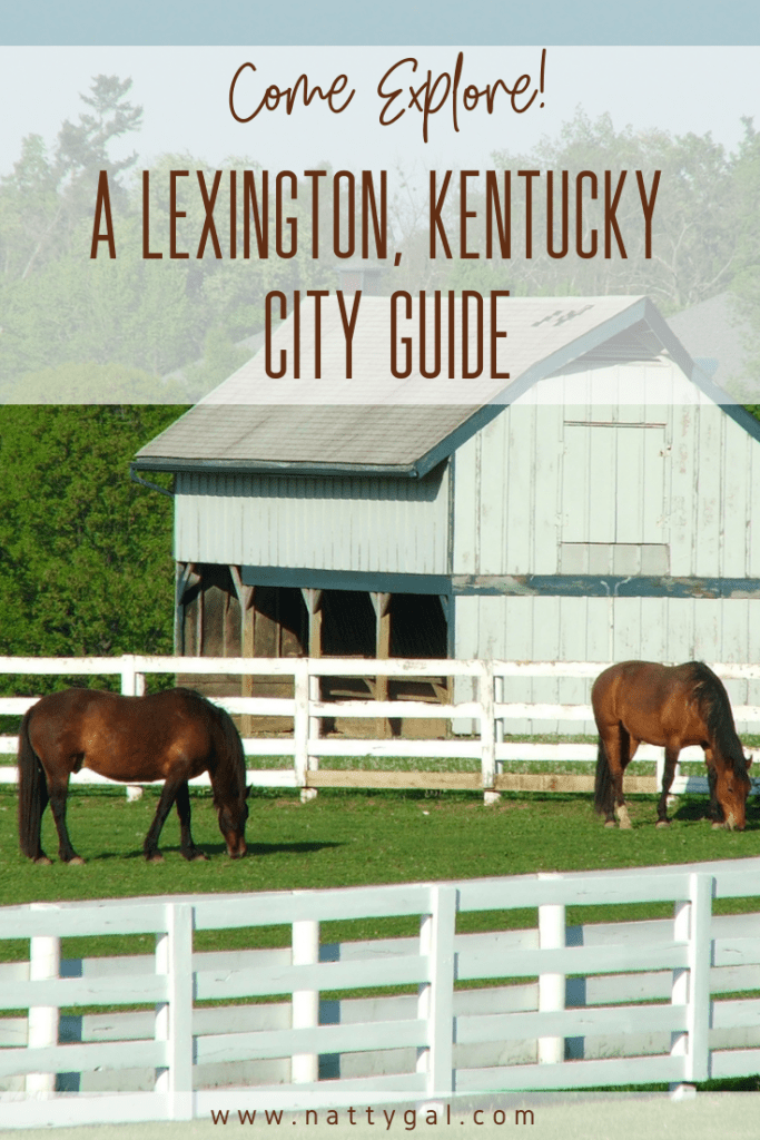 On a recent road trip, our first overnight stop was in Lexington, Kentucky.   We came armed with a lofty list of things we wanted to do and were able to get to quite a few of them.  Come check out our recommendations for what to do in this comprehensive Lexington Kentucky City Guide.