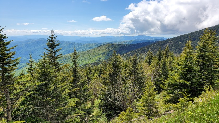 Guide to Pigeon Forge/Gatlinburg