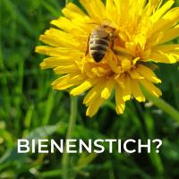 Bienenstich - erste Hilfe