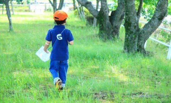 虫取りをしている男の子の後ろ姿の写真