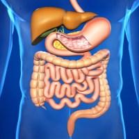 6 продуктов для улучшения работы кишечника и желудка