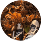Walk and Call im Wald mit Natur-Wolf