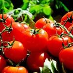 夏のスーパーフード!トマトジュースでヘルシーダイエット
