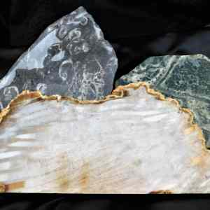 Shop Lapidary Slabs