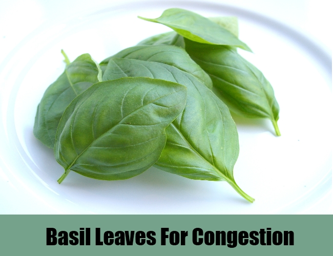 Basil Leaves For Congestion