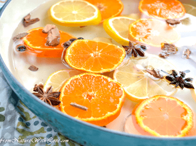 Orange Spice Holiday Simmer