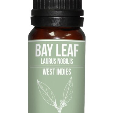 Bay laurel essential oil is excellent for use on the hair as a stimulant and a tonic.  Buy online with Next Day Delivery