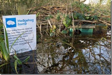 Partially submerged hedgehog home.