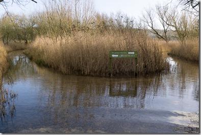 Flooded footpaths to Grisedale and Tim Jacksons Hide