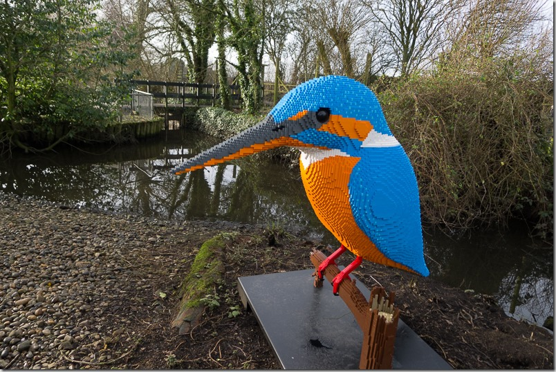 Lego Kingfisher at WWT Martin Mere