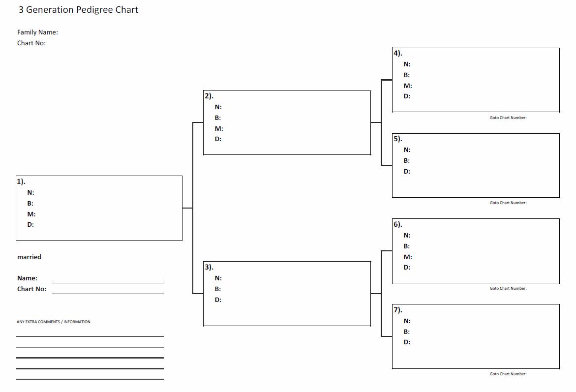 simple pedigree diagram nl4fc wiring genealogy spreadsheet natural buff dog