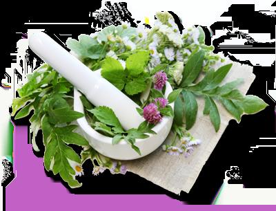Bilderesultat for herbs for fourth chakra