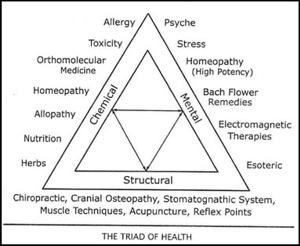 Applied kinesiology triad of health