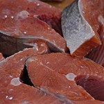 salmon-foto