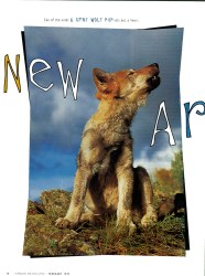 Cover of 1997 Horizon Air: New Arrivals