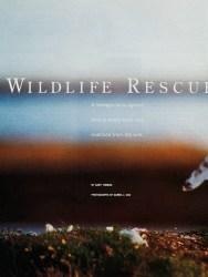 Cover of 2000 Boys' Life: Wildlife Rescue