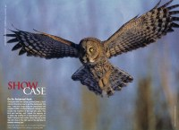 Cover of 2010 November Outdoor Photographer