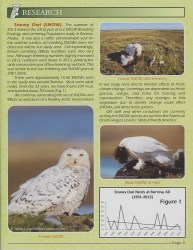 Cover of 2013 November The Roost from The Owl Research Institute