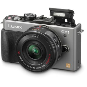 Panasonic Lumix GX1 with the 14-42X lens. Very compact, light and superb image quality