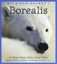 Cover of Borealis