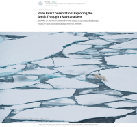 Cover of 2016 Arctic Nation