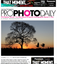 Cover of 2015 December ProPhotoDaily