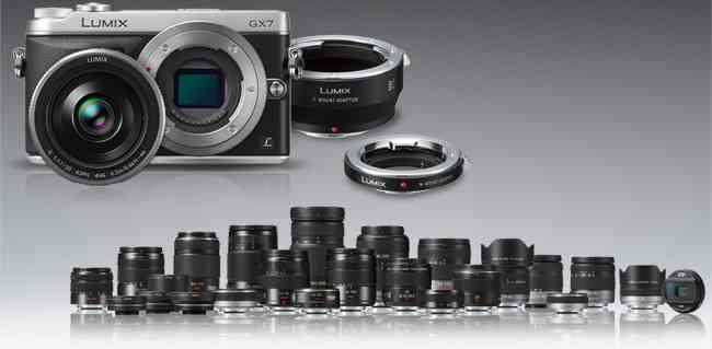 The Lumix system of lenses is fairly deep. Nothing like Nikon's but I've not been wanting for anything they currently don't have.