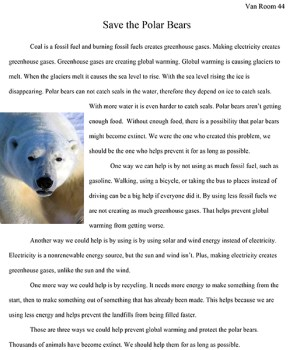 an essay on critism summary strong research skills resume essay on species near extinction photo essays beautiful the wild wwf