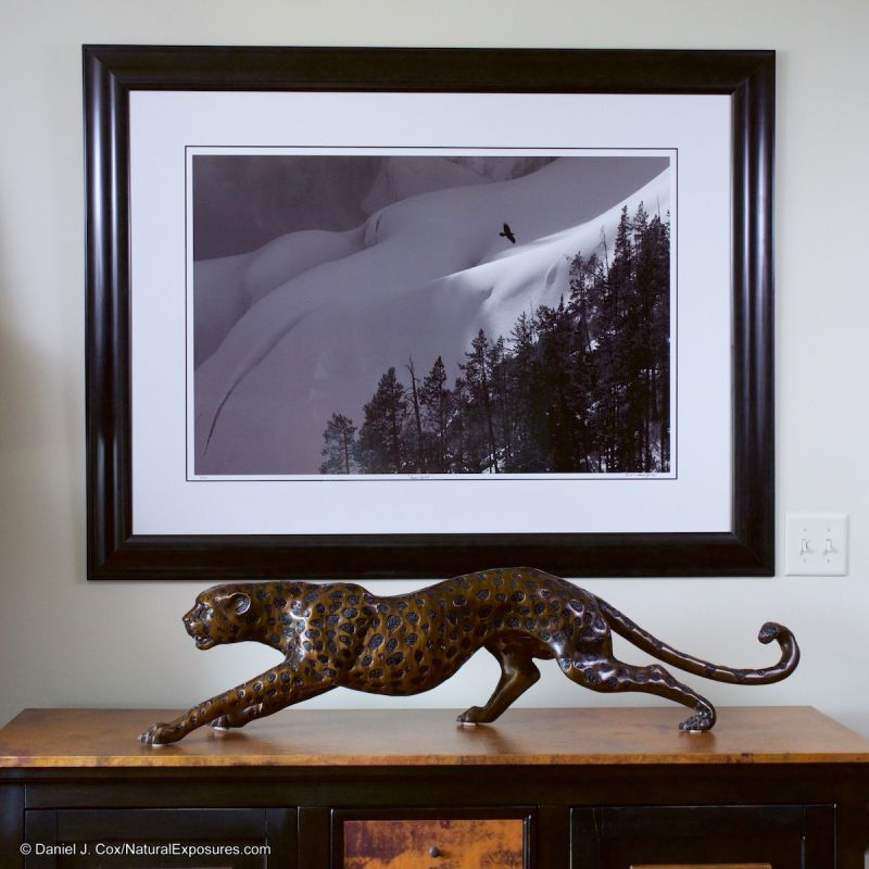 """This image """"Raven Spirit"""" is one of my Fine Art prints from the Yellowstone Collection. The image size is 24x36 inches and was shot with the Lumix GH4 and the Olympus 40-150mm F/2.8 lens. The details in this image are spectacular."""