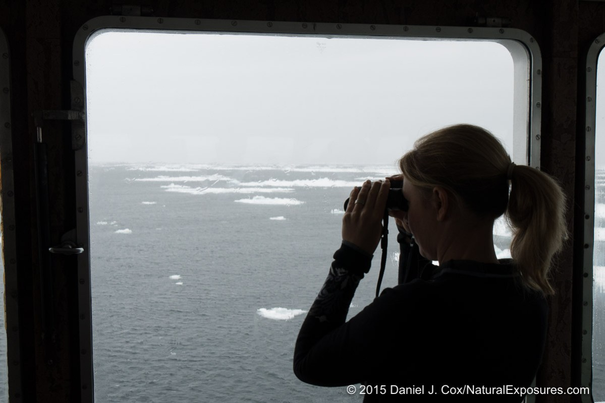 Tanya searching for polar bears as we get closer to the ice pack. Norway.