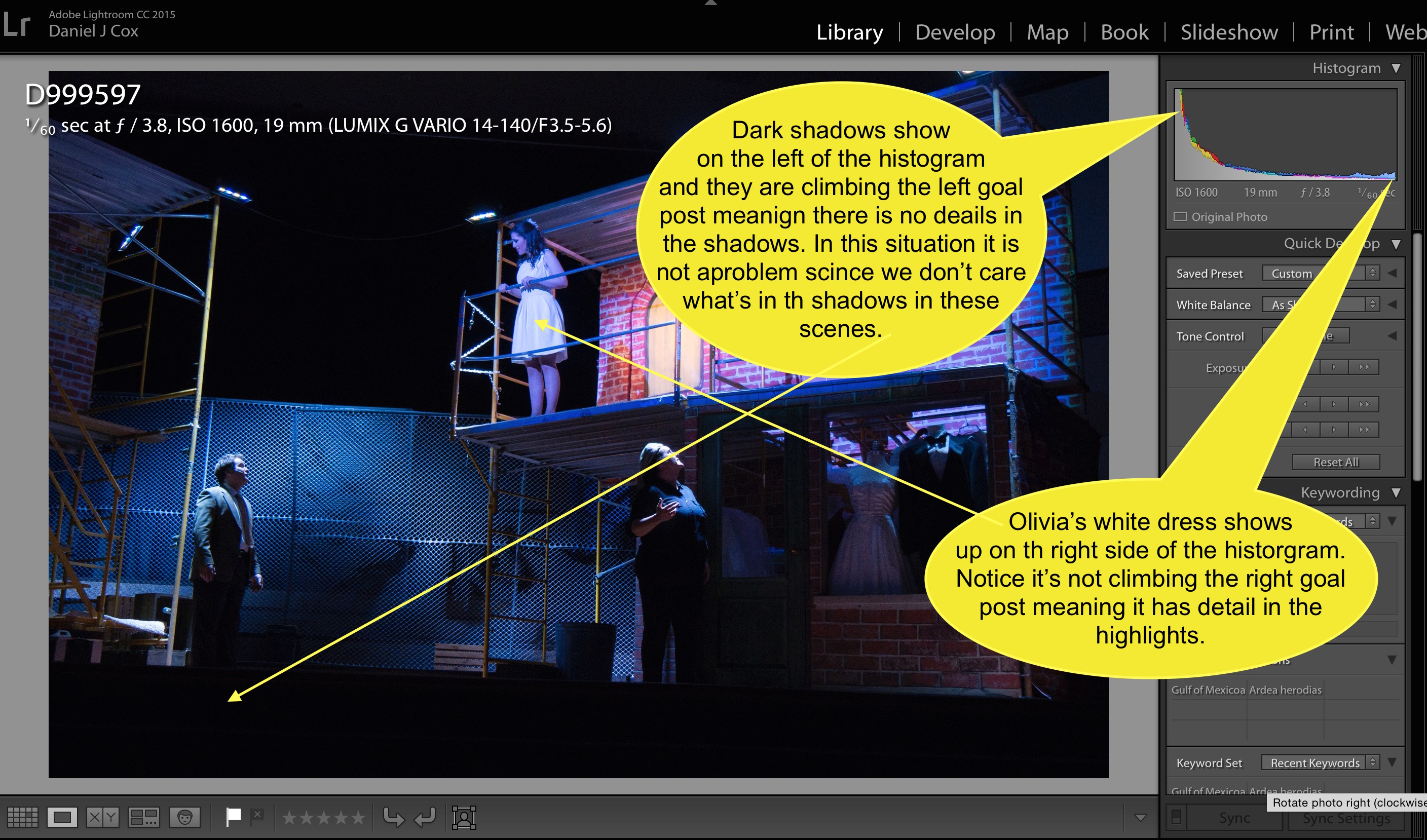 Notice the highlights and shadows as they are represented in the histogram within Lightroom.