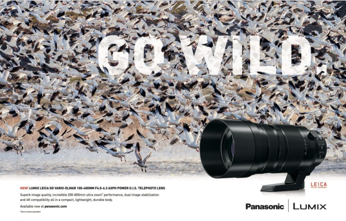 Daniel's favorite image from the Leica 100-400mm ad campaign that was shot in Bosque del Apache NWR in New Mexico. This peaceful advertisement was designed by Michelle Esgar in the art department of Panasonic US