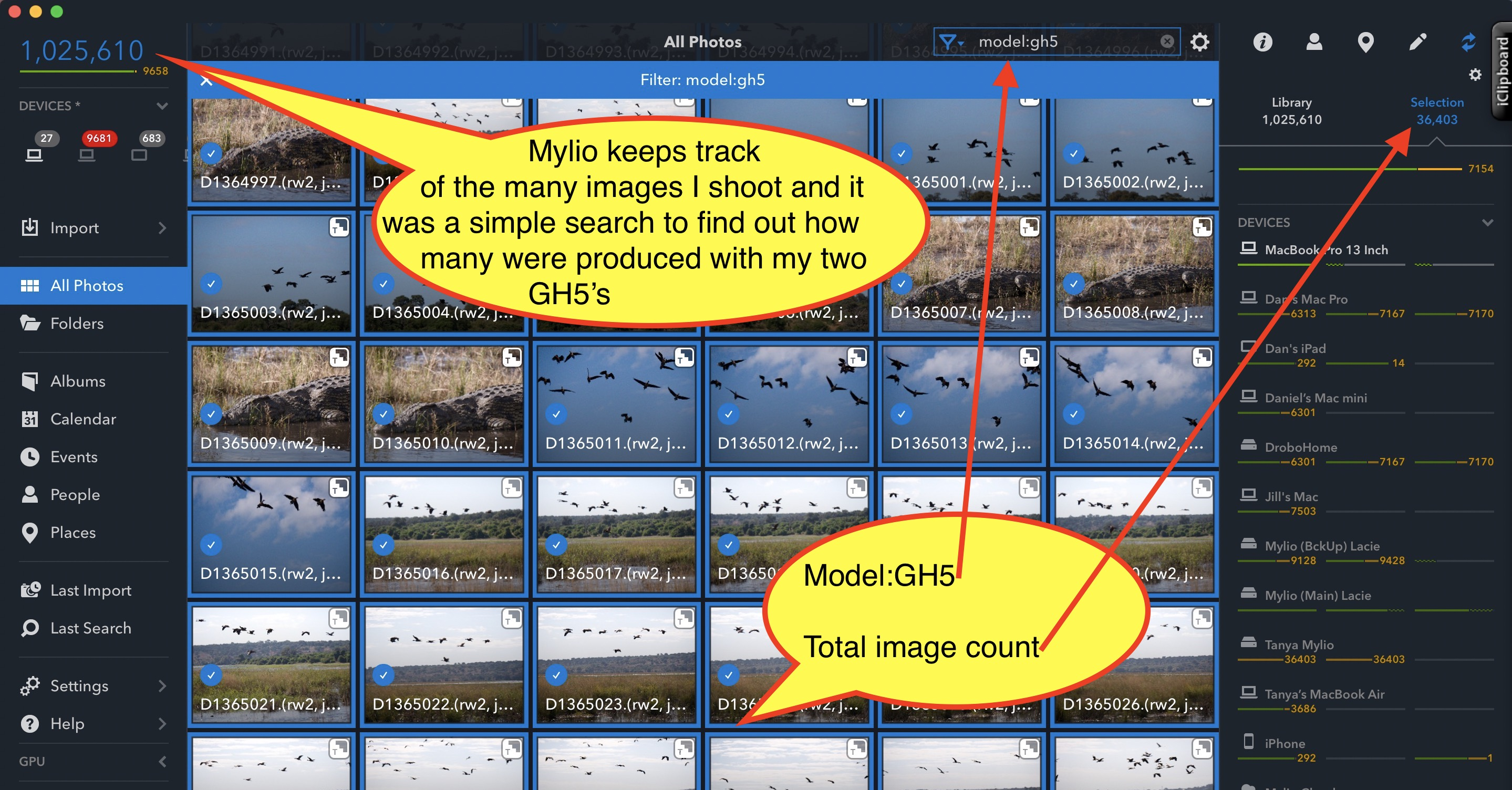Mylio workflow