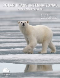 Cover of 2019 Polar Bears International Annual News Magazine