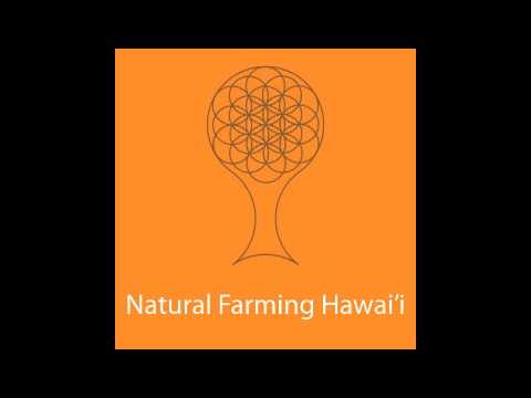 Practical Ag for Hamakua Presentation