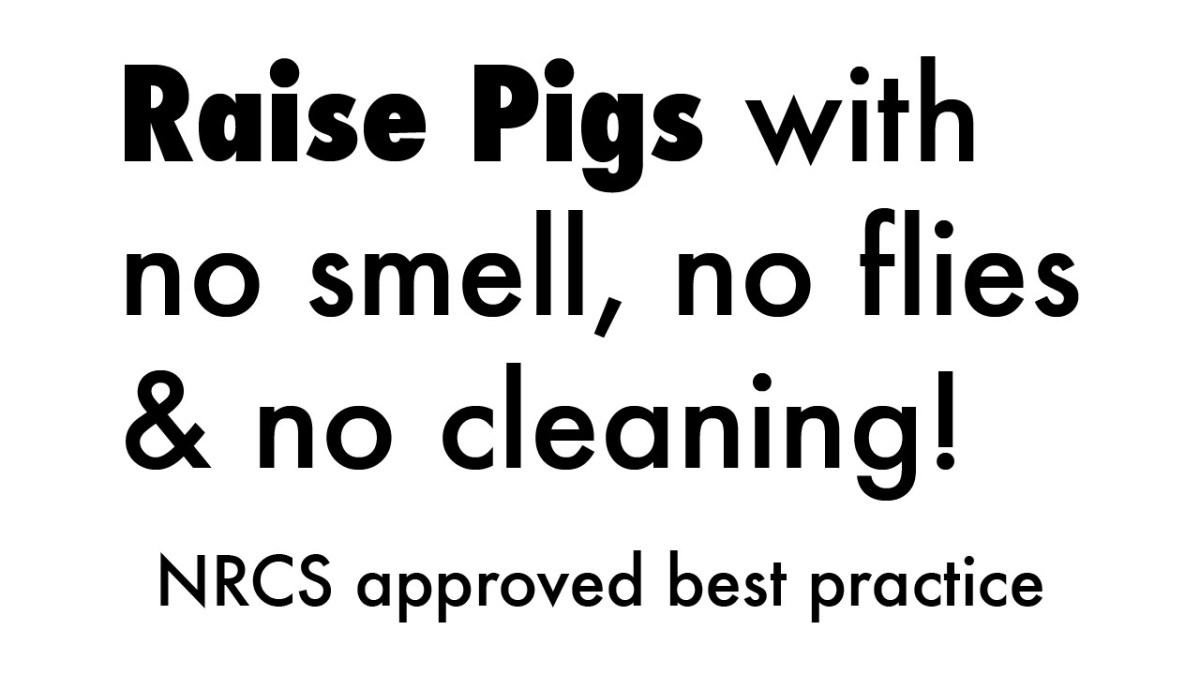 No-smell, no clean pigs – May 2015